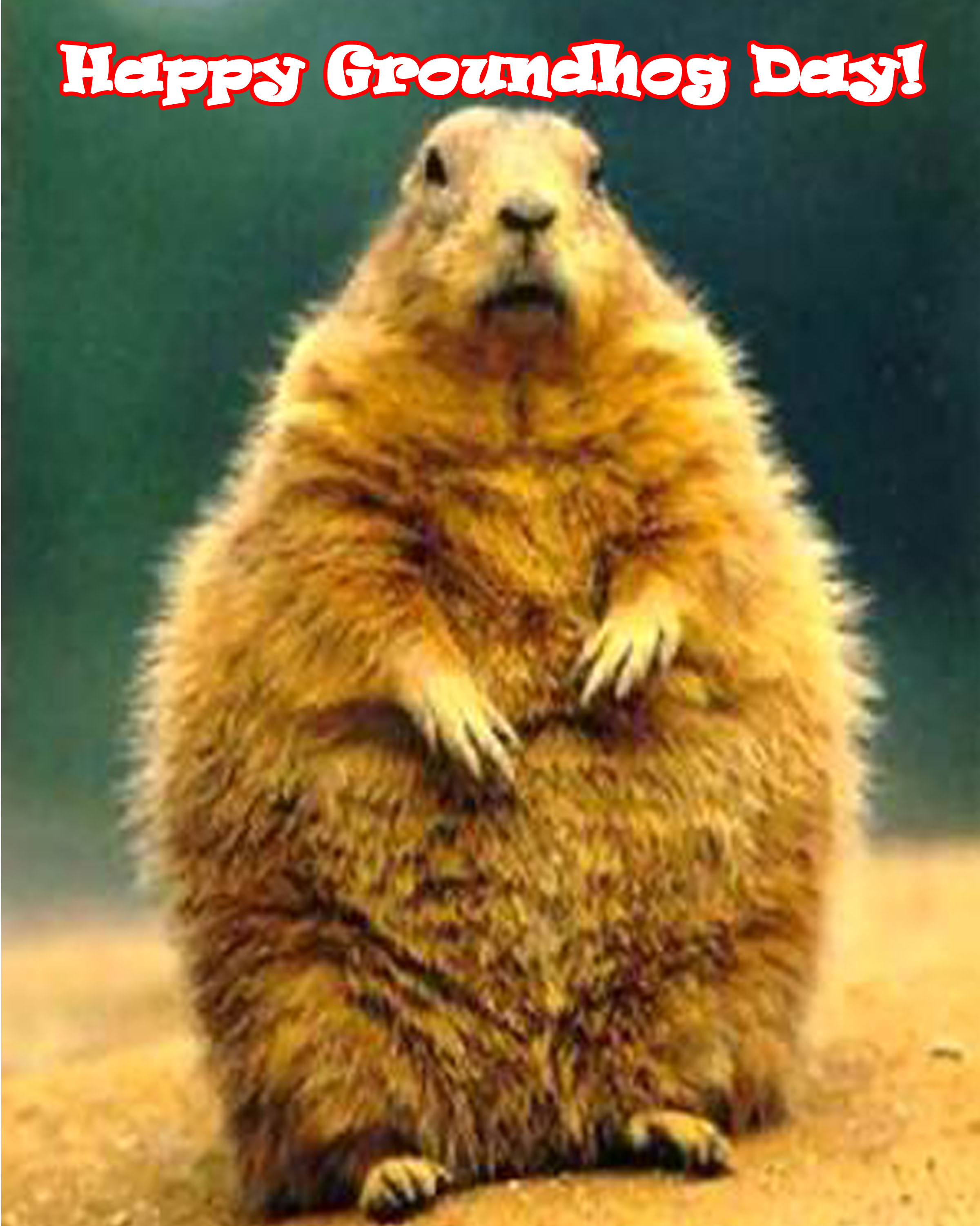 Happy GROUNDHOG DAY « University Program Board